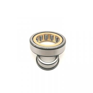 FAG NUP2226-E-M1  Cylindrical Roller Bearings