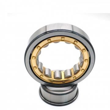 FAG NU317-E-M1-C3  Cylindrical Roller Bearings