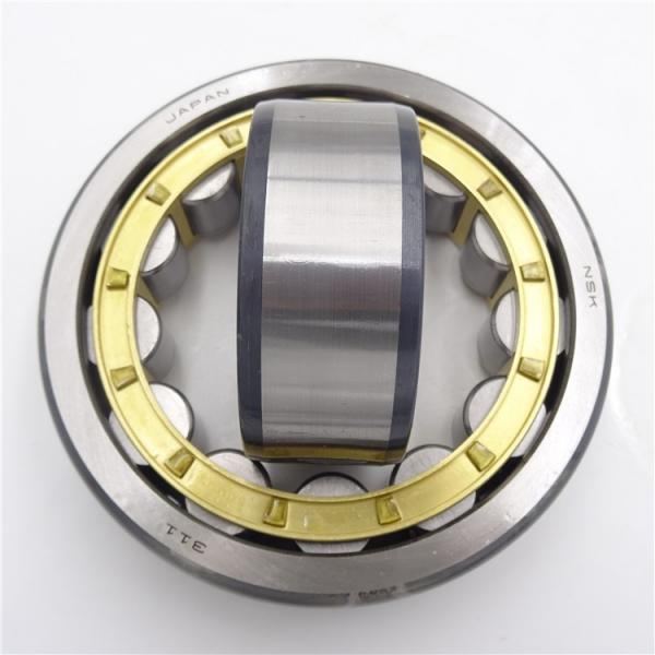 FAG NU317-E-M1  Cylindrical Roller Bearings #1 image