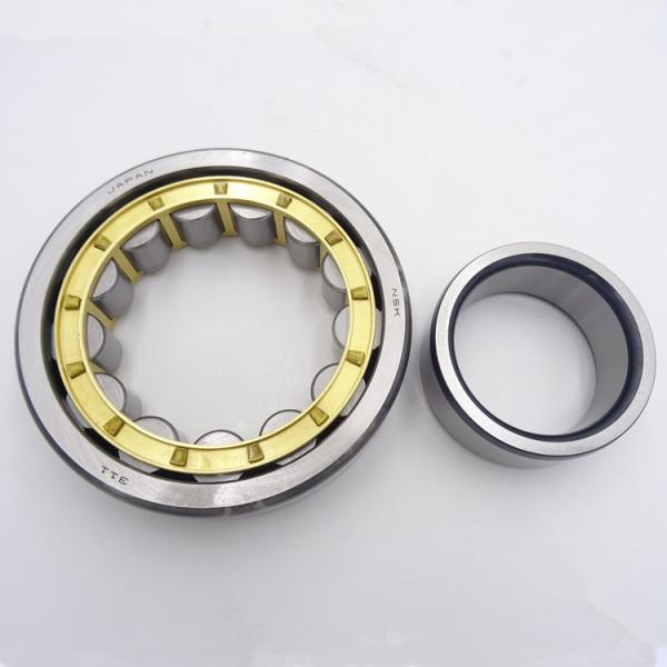 FAG NU317-E-M1  Cylindrical Roller Bearings #4 image