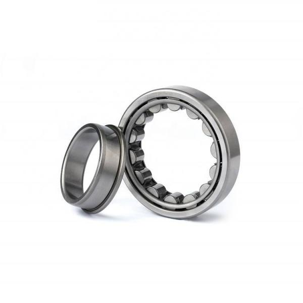 FAG NU317-E-M1  Cylindrical Roller Bearings #5 image