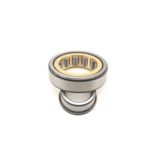 FAG NU316-E-M1A-C3  Cylindrical Roller Bearings #1 image